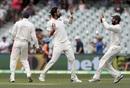 Ishant Sharma celebrates after dismissing Tim Paine, Australia v India, 1st Test, Adelaide, 2nd day, December 7, 2018
