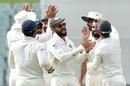 Virat Kohli celebrates with his team-mates, Australia v India, 1st Test, Adelaide, 4th day, December 9, 2018