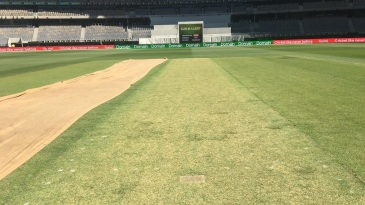 A lively looking pitch at the new Perth Stadium ahead of its debut Test between Australia and India