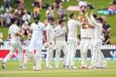 Tim Southee ripped through Sri Lanka's top order, New Zealand v Sri Lanka, 1st Test, Wellington, 1st day, December 15, 2018
