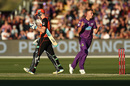 Riley Meredith is thrilled after taking a wicket, Hobart Hurricanes v Perth Scorchers, BBL 2018-19, Launceston, December 30, 2018