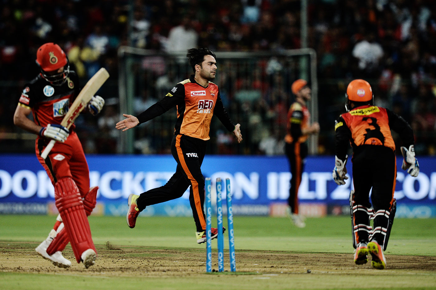 Rashid Khan celebrates the wicket of Virat Kohli