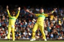 Peter Siddle appeals unsuccessfully, Australia v India, 1st ODI, Sydney, January 12, 2019