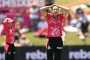Ellyse Perry felt she didn't take enough responsibility in the final, Sydney Sixers v Brisbane Heat, Women's Big Bash League 2018-19, final, Sydney, January 26, 2019