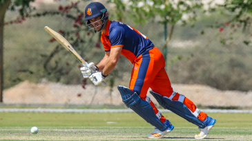 Ryan ten Doeschate flicks through midwicket