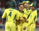 Adam Zampa is mobbed by his team-mates, India v Australia, 3rd ODI, Ranchi, March 8, 2019
