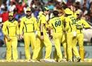 Jhye Richardson celebrates a wicket, India v Australia, 4th ODI, Mohali, March 10, 2019