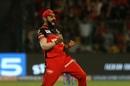 Virat Kohli is over the moon as a Kings XI Punjab wicket falls, Royal Challengers Bangalore v Kings XI Punjab, IPL 2019, Bengaluru, April 24, 2019
