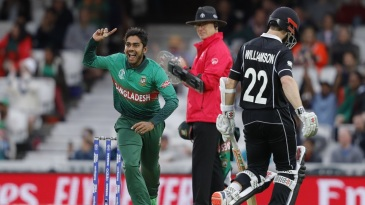 Mehidy Hasan celebrates after dismissing Kane Williamson