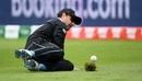 Colin de Grandhomme drops Hazratullah Zazai, Afghanistan v New Zealand, World Cup 2019, Taunton, June 8, 2019
