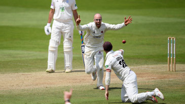 Jack Leach celebrates another wicket for Somerset