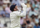 Gary Wilson celebrates after catching Moeen Ali, England v Ireland, Only Test, 2nd day, July 25, 2019