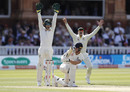 Tim Paine and Steve Smith appeal after Ben Stokes is trapped on the pad, England v Australia, 2nd Test, Lord's, 2nd day, August 15, 2019