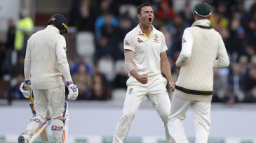 Josh Hazlewood roars with delight after bowling Jason Roy