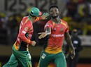 Romario Shepherd celebrates a wicket with captain Shoaib Malik, Guyana Amazon Warriors v Barbados Tridents, CPL 2019, Providence, September 8, 2019