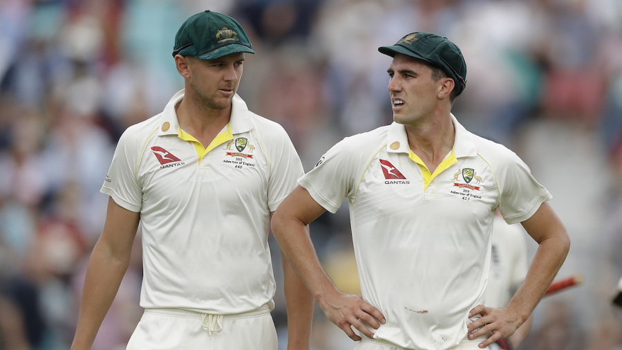 Josh Hazlewood and Pat Cummins have taken 47 wickets between them in the 2019 Ashes so far