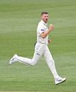 Jackson Bird celebrates a wicket, Tasmania v Victoria, Sheffield Shield, Hobart, November 1, 2019