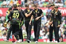 Kane Richardson is chuffed after taking a wicket, Australia v Pakistan, 1st T20I, Sydney, November 3, 2019