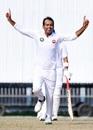 Nauman Ali celebrates yet another wicket, Central Punjab v Northern, Quaid-e-Azam Trophy 2019-20, 1st day, Faisalabad, November 4, 2019