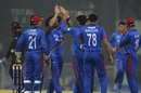 Karim Janat is congratulated for a wicket, Afghanistan v West Indies, 2nd T20I, Lucknow, November 16, 2019