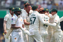 Josh Hazlewood claimed Australia's second wicket in quick succession, Australia v Pakistan, 1st Test, Brisbane, November 21, 2019