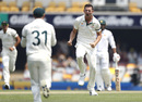 Josh Hazlewood celebrates the wicket of Azhar Ali, Australia v Pakistan, 1st Test, Brisbane, November 21, 2019