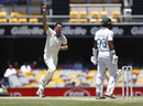 Josh Hazlewood celebrates the wicket of Iftikhar Ahmed, Australia v Pakistan, 1st Test, Brisbane, November 24, 2019