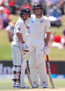 BJ Watling and Mitchell Santner took their partnership beyond 200, New Zealand v England, 1st Test, Mount Maunganui, 4th day, November 24, 2019