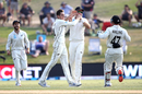 Mitchell Santner is congratulated on a wicket, New Zealand v England, 1st Test, Mount Maunganui, 4th day, November 24, 2019