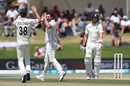 Colin de Grandhomme claimed the wicket of Joe Root, New Zealand v England, 1st Test, Mount Maunganui, 5th day, November 25, 2019