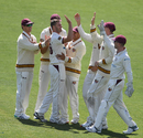 Mark Steketee celebrates a wicket with his teammates, Tasmania v Queensland, Sheffield Shield, Hobart, November 29, 2019