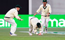 Steven Smith took a low catch at second slip, Australia v Pakistan, 2nd Test, Adelaide, 2nd day