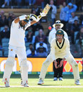 Mohammad Rizwan took a painful blow in the chest, Australia v Pakistan, 2nd Test, Day 4, Adelaide, December 2, 2019