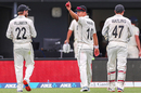 Neil Wagner holds the ball aloft after claiming a five-for, New Zealand v England, 2nd Test, Hamilton, 4th day, December 02, 2019