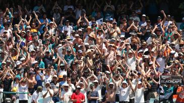 New Zealand fans soak up Test-match atmosphere