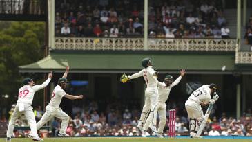 Australia celebrate as Tim Paine catches Glenn Phillips