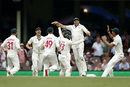 James Pattinson celebrates taking a catch, Australia v New Zealand, 3rd Test, Sydney, 4th day, January 6, 2020