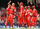 Will Sutherland celebrates a wicket, Melbourne Renegades v Brisbane Heat, BBL 09, Melbourne, January 27, 2019