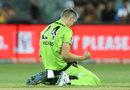 Chris Morris celebrates the wicket of Matt Short, Adelaide Strikers v Sydney Thunder, Adelaide, The Knockout, BBL09, February 1, 2020
