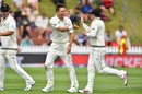 Trent Boult and Tom Latham celebrate Mayank Agarwal's dismissal, New Zealand v India, 1st Test, Wellington, 1st day, February 21, 2020