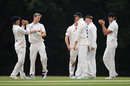 Tom Scriven celebrates his maiden first-class wicket, Hampshire v Surrey, Bob Willis Trophy, Arundel, August 16, 2020