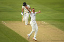 Josh Davey belts out an appeal, Somerset v Gloucestershire, Bob Willis Trophy, Taunton, August 24, 2020