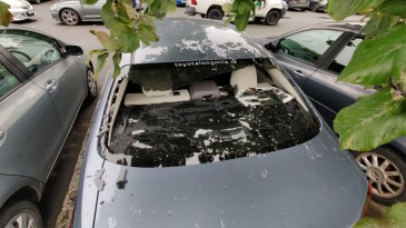 Kevin O'Brien smashed his own windscreen while hitting a six