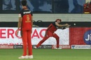 Dale Steyn can't hold on to a skier in the deep, Royal Challengers Bangalore vs Sunrisers Hyderabad, IPL 2020, Dubai, September 21, 2020