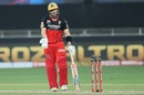 'What do you want from me' - Aaron Finch seems to be asking, Royal Challengers Bangalore vs Sunrisers Hyderabad, IPL 2020, Dubai, September 21, 2020