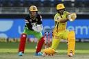 Ambati Rayudu looks to go leg side, Chennai Super Kings vs Royal Challengers Bangalore, IPL 2020, Dubai, October 25, 2020
