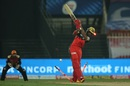 Devdutt Padikkal has his stumps crashed, Royal Challengers Bangalore vs Sunrisers Hyderabad, IPL 2020, Sharjah, October 31, 2020