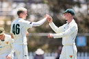 Peter Siddle took three wickets to help dismantle New South Wales, New South Wales v Tasmania, Sheffield Shield, Park 25, Adelaide, November 8, 2020