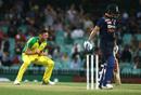 Josh Hazlewood celebrates the key wicket of Virat Kohli, Sydney, Australia vs India, 1st ODI, November 27, 2020