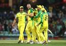 The Australian team gather around Josh Hazlewood after his key strikes, Sydney, Australia vs India, 1st ODI, November 27, 2020